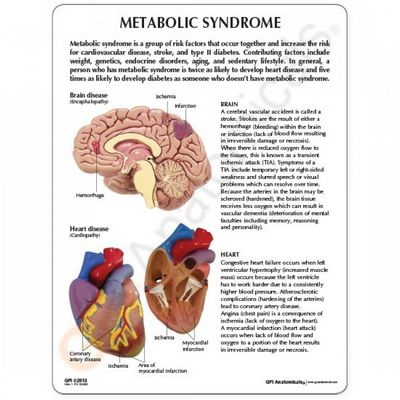 Can You Have Metabolic Syndrome?